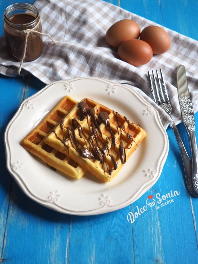 Waffle – Ricetta, ingredienti e preparazione – Dolce Sonia