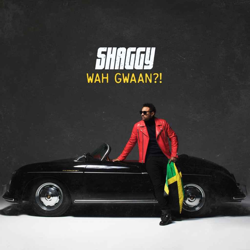 Shaggy Featuring Alexander Stewart - You